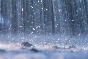 Rain - image